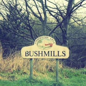 Bushmills conserv