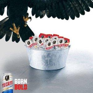 tecate eagle tw jan 16