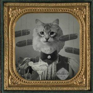 hend cat tw 9616